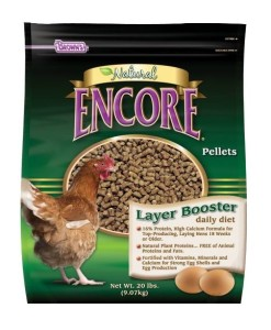 chicken feed for raising chickens