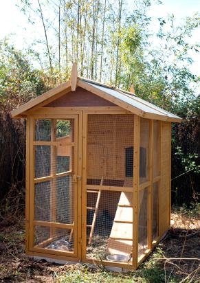 chicken house chicken coop