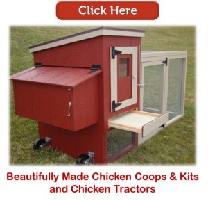chicken coops & kits & chicken tractors