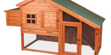 "Customer Comment ""The Perfect Chicken Coop"""